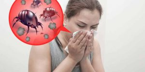 Alergia a los ácaros